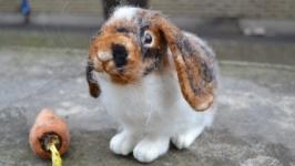 Кролик Шустрик . Валяние из шерсти.