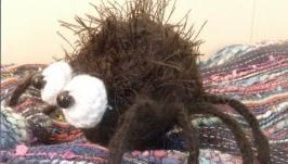 Чёрный паук Minuscule