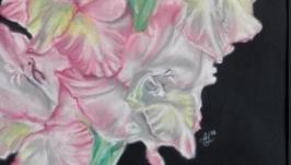 Рожевий Гладіолус