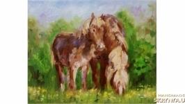 Кони  лошадь лошади жеребенок картина
