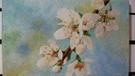 «Весняна свіжість»