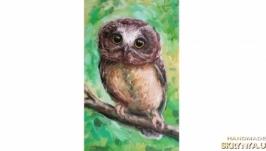 Картина сова совушка