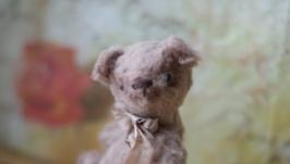 тут изображено мишка Тедди