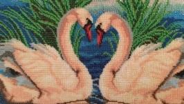 Пара лебедей,верность
