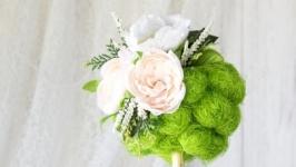 Декоративное деревцо ′Нежность′