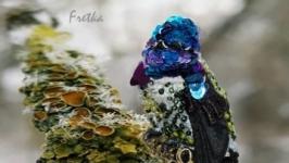 Брошь из бисера и пайеток ′Колибри′ - Аметистовый колибри