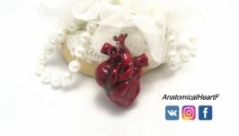 Купить кулон Анатомическое сердце из полимерной глины