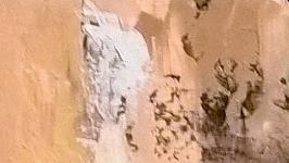Картина ′Танцовщица′, холст на подрамнике, масло, мастехин, размер 50х70 см