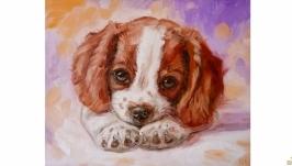 картина собака щенок собачка щеночек спаниель цуцик цуценя