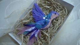 Фіолетовий колібрі