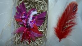 Пурпурова колібрі