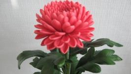 Хризантема из холодного фарфора. Ручная работа. Подарок.