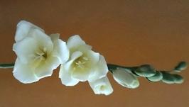 Гілочка фрезії (японська полімерна глина deco clay)