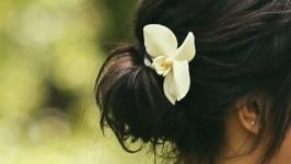 Украшение для волос. Шпилька, заколка. Орхидея. Холодный фарфор.