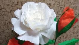 Композиции из роз