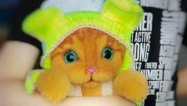 Тедди котёнок Рыжик