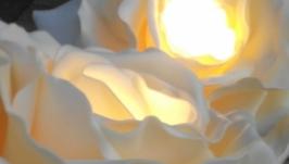 светильник цветок роза бра люстра на жестком креплении
