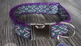 Ошейник для собаки фиолетово-зелёный