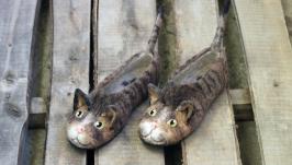 Валяные тапочки Коты табби