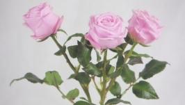 Цветы ручной работы. Розы. Декор для интерьера
