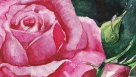 Картина ′Трепетная Роза′