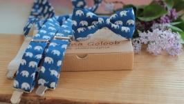 Комплект подтяжки и бабочка  ярко-синий ′Слоники′