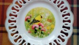 Овсянка на репейнике (тарелка №2)