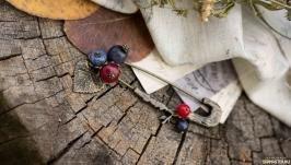 Брошь-булавка ′Лукошко ягод′