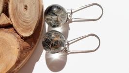 Сережки з парашутиками кульбаби в епоксидній смолі