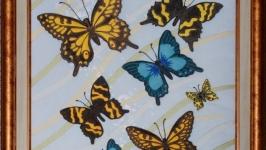 11 бабочек