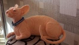 кот сфинкс из шерсти