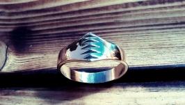 Кольцо Zubr, латунь, стиль - модерн