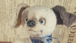 Щенок Тедди