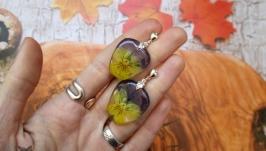 Серьги-пусеты из натуральных цветов виолы (Анютины глазки).