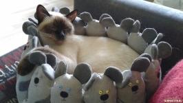 Лежанка для кошки ′Панды′ круглая мягкая оригинальная ткань