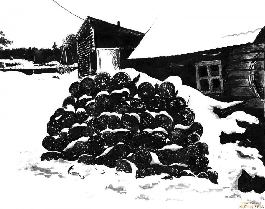 тут изображено Среди зимы 6