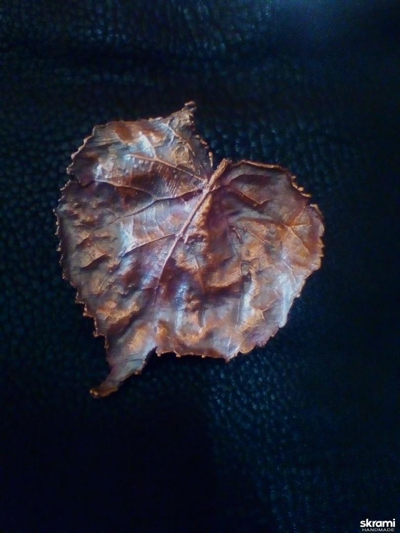 тут изображено брошь - зажим ′Осенний поцелуй′