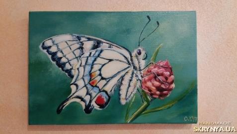 тут изображено Бабочка. Живопись, масло.