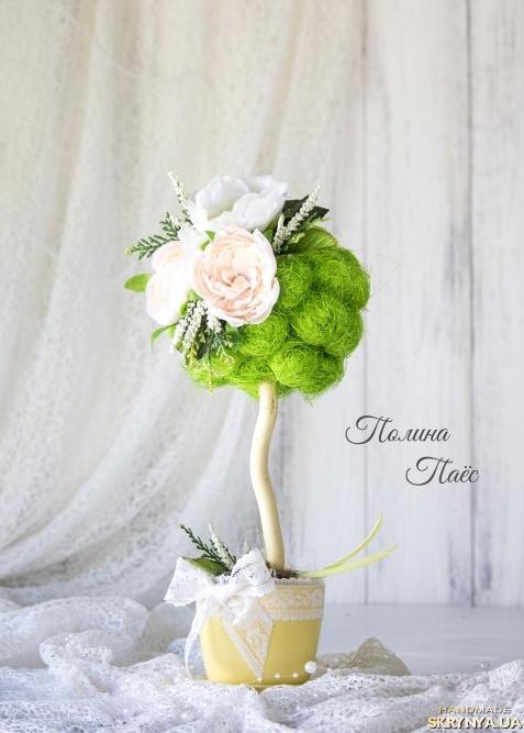 тут изображено Декоративное деревцо ′Нежность′