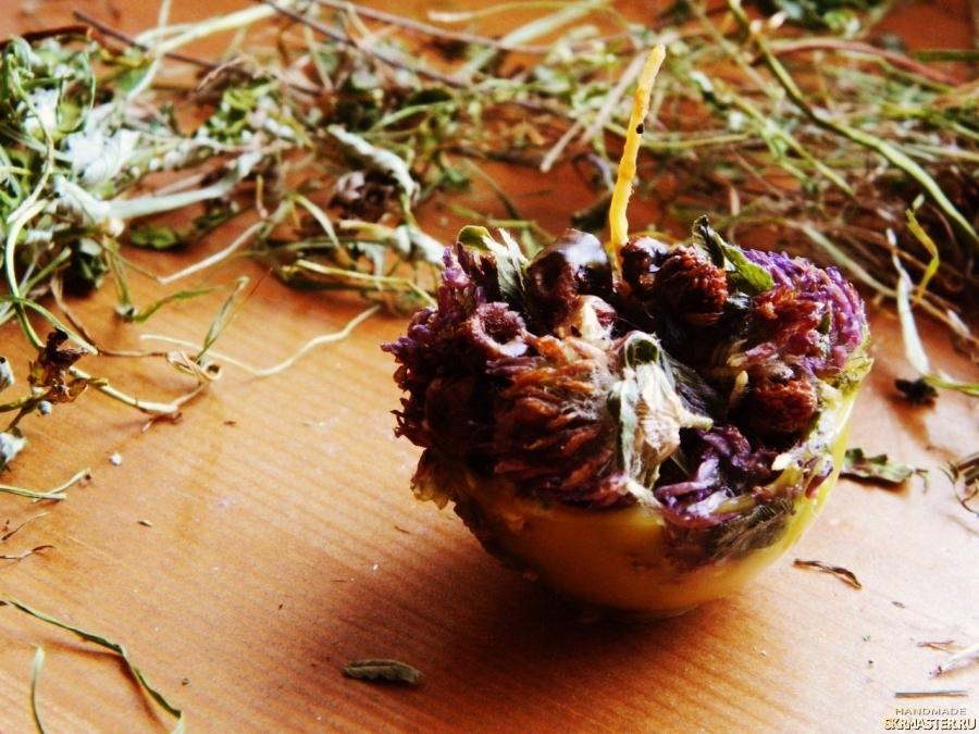 тут изображено Травяная свеча ′Ягодная полянка′