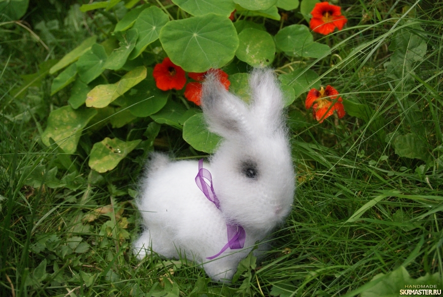 тут изображено Кролик Белое Облачко