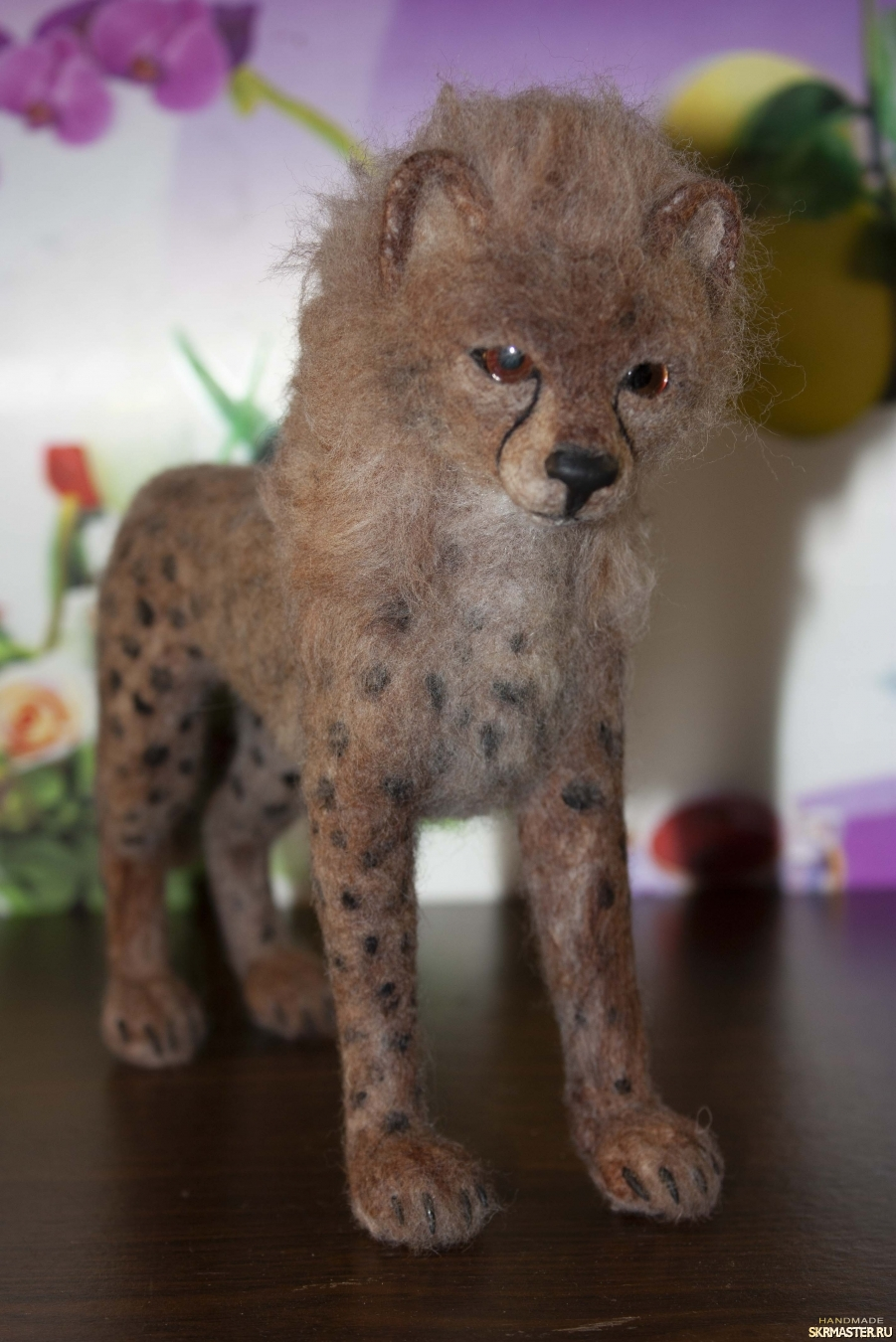 тут изображено гепард котёнок