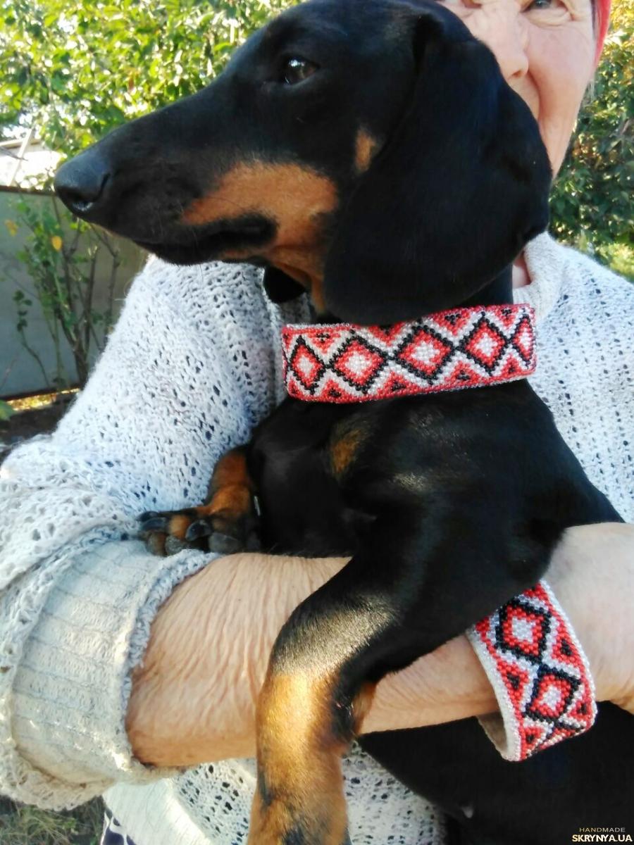 тут изображено Ошейник для собаки и браслет хозяину, вышитые бисером